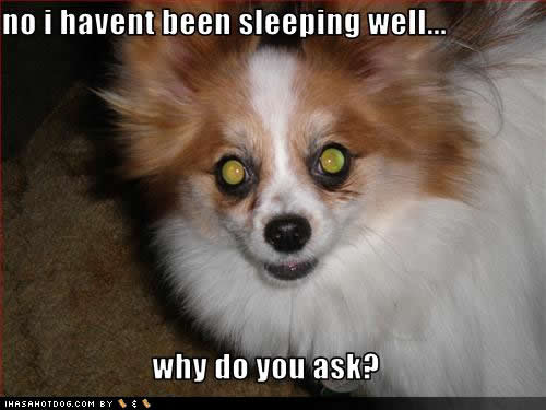 Monday mention a good night s sleep sasha devlin - Funny animal pictures with words ...
